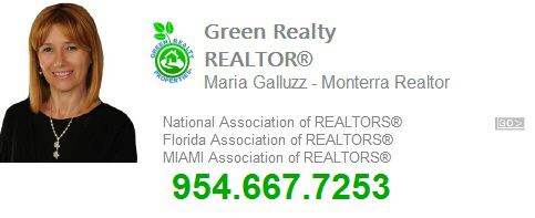 Maria Galluzz, Embassy Lakes REALTOR